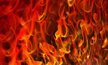 Fire Born